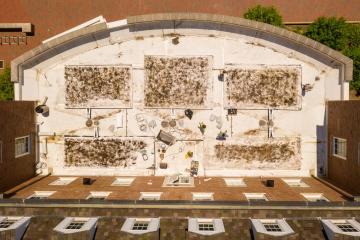 Schoonover Green Roof
